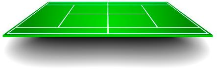 Court surface - Grass